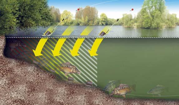 Как Пробить Дно Фидером Поиск Точки Ловли Рыбалка Авторский Канал ВЩеглова Smolfish